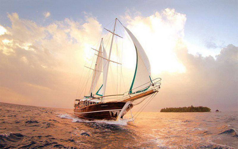 Câu chuyện về gió và những cánh buồm khiến bạn sực tỉnh