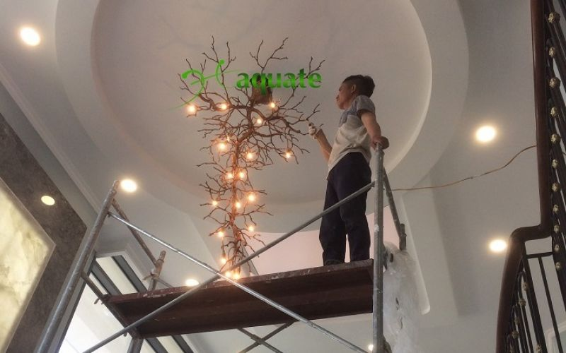 Lắp đặt đèn chùm đồng pha lê Cây Tuyết Tan cho nhà Khách Hàng