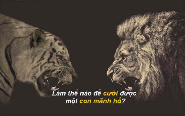 Bai hoc thanh cong lam the nao de cuoi duoc mot con manh ho
